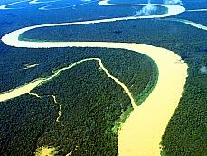 Meio Ambiente - Amazônia - Floresta Amazônica