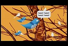 O passarinho símbolo do twitter e seus filhotes