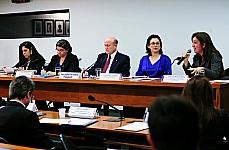 Reunião Ordinária e Audiência Pública. Tema: