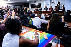 IX Seminrio LGBT no Congresso Nacional Respeito  Diversidade se Aprende na Infncia Sexualidade, Papis de Gnero e Educao na Infncia e na Adolescncia