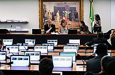 Dep. Ricardo Berzoini (presidente)