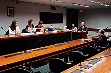 Audiência Pública: Alterações na Lei nº 9.394/96, que estabelece as diretrizes e bases da educação nacional, referentes à educação infantil em creches públicas, diurnas e noturnas