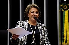 Sessão Extraordinária - PL 5658/2009 (CPI Pedofilia), do Senado Federal  - dep. Elcione Barbalho (relatora para proferir o parecer pela Comissão de Seguridade Social e Família)