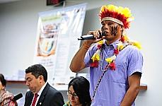 Em dezembro do ano passado, lideranças indígenas protestaram contra a PEC que transfere do Executivo para o Congresso a responsabilidade de reconhecer terras indígenas (PEC 215/00).