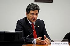 Audiência Pública e Reunião Ordinária. Dep. Rogério Carvalho (relator)