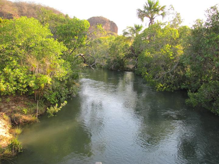 Meio Ambiente parques florestas Parque nascente rio parnaíba