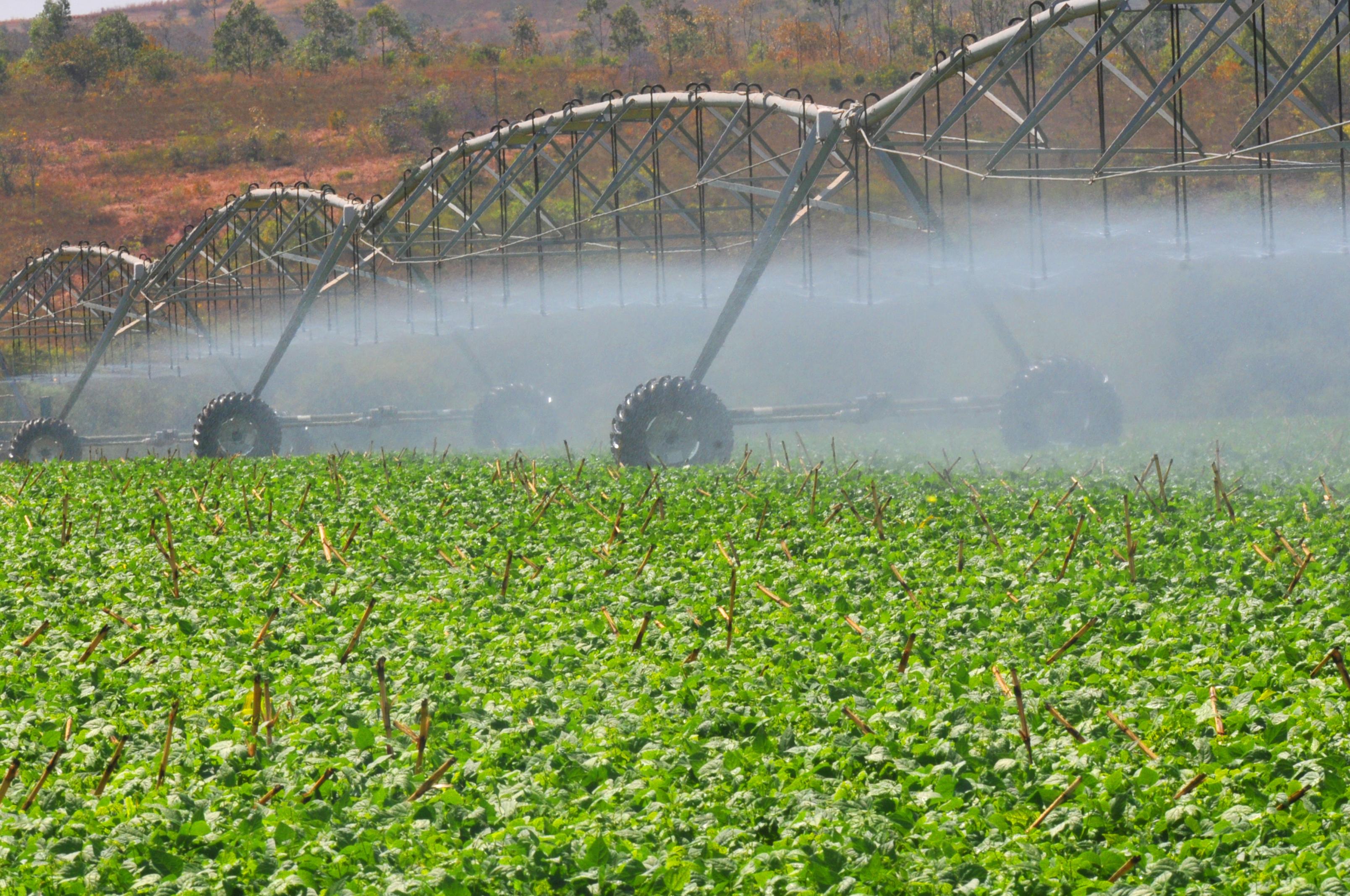 Agropecuária - plantações - irrigação plantio água agricultores fazendas produção