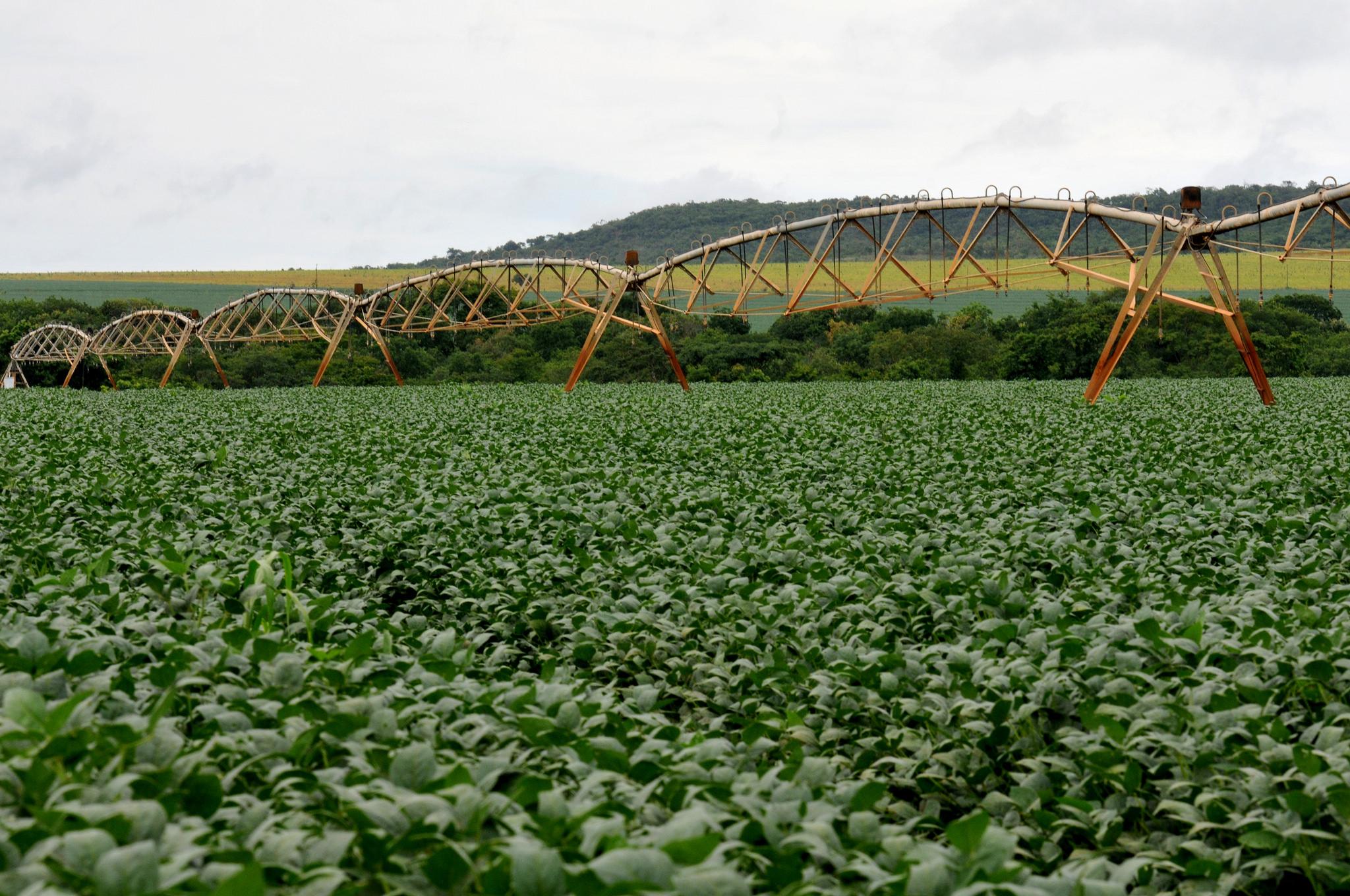 Agropecuária - plantações - irrigação água lavoura tecnologia agrícola