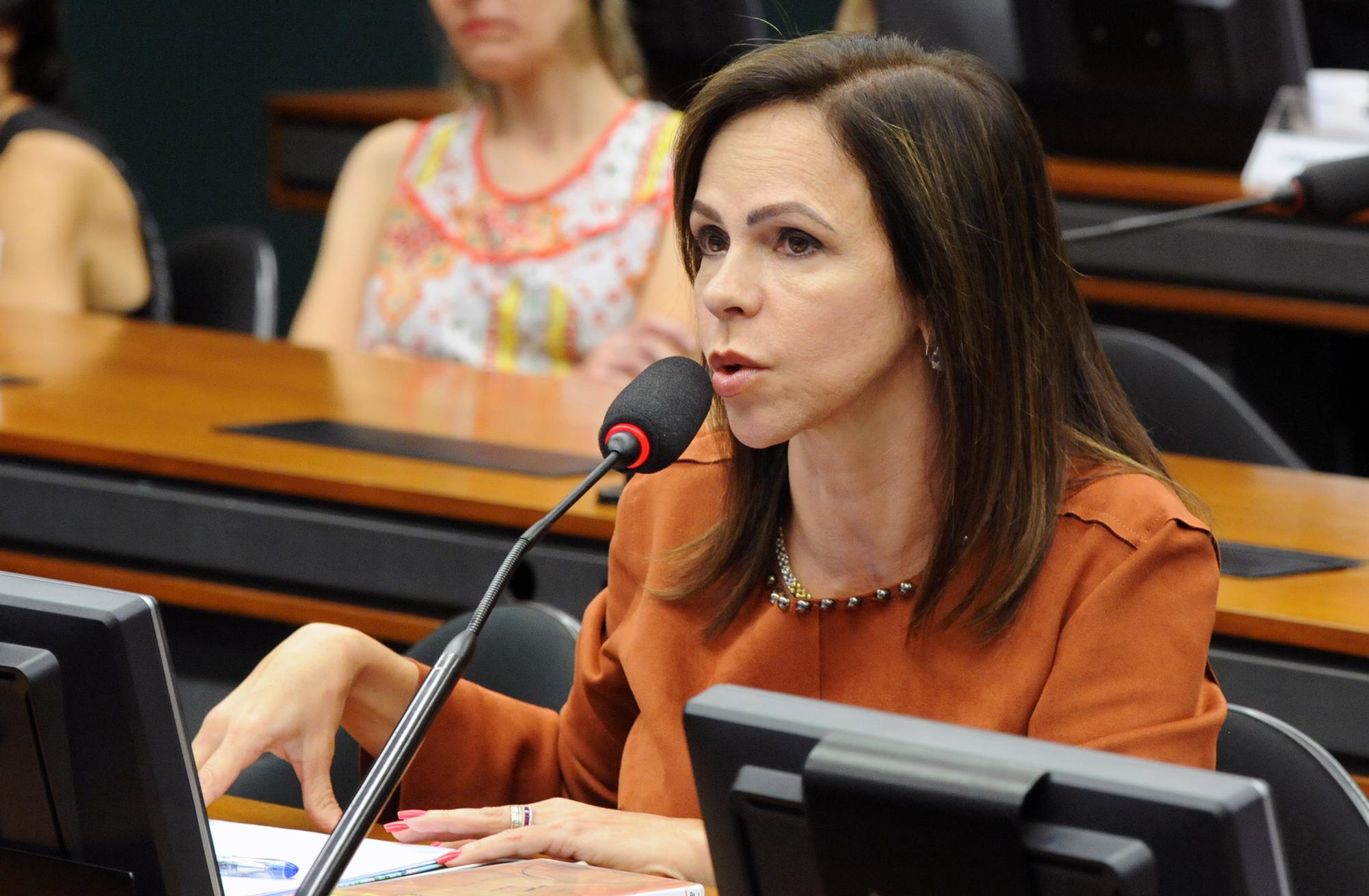 Reunião Deliberativa. Dep. Professora Dorinha Seabra Resende (DEM - TO)