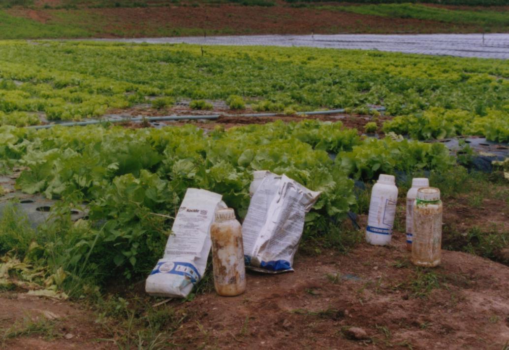 Agropecuária - agrotóxicos pesticidas