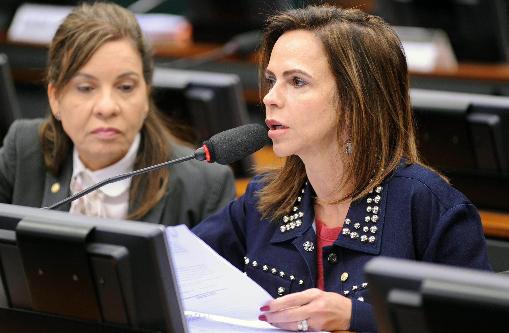 Audiência Pública e Reunião Ordinária. Dep. Professora Dorinha Seabra Resende (DEM - TO)