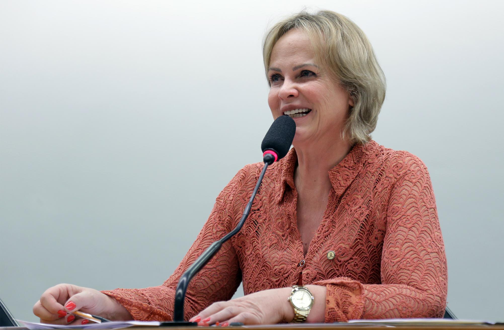 Audiência Pública e Reunião Extraordinária. Dep. Ana Perugini (PT - SP)