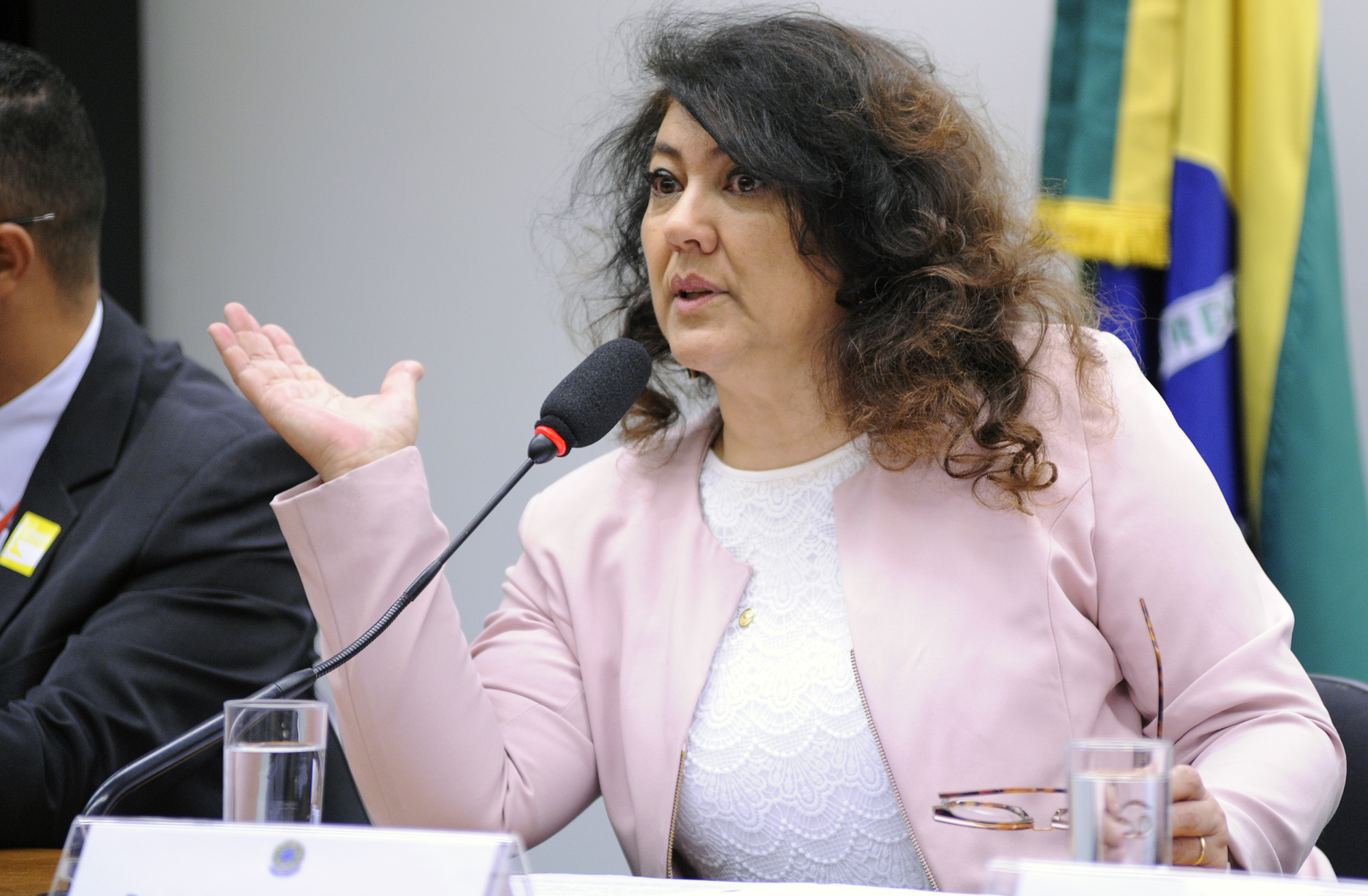 Audiência pública sobre o Fundo Nacional de Segurança e Educação no Trânsito (FUNSET) e seus contingenciamentos. Dep. Christiane de Souza Yared (PR-PR)