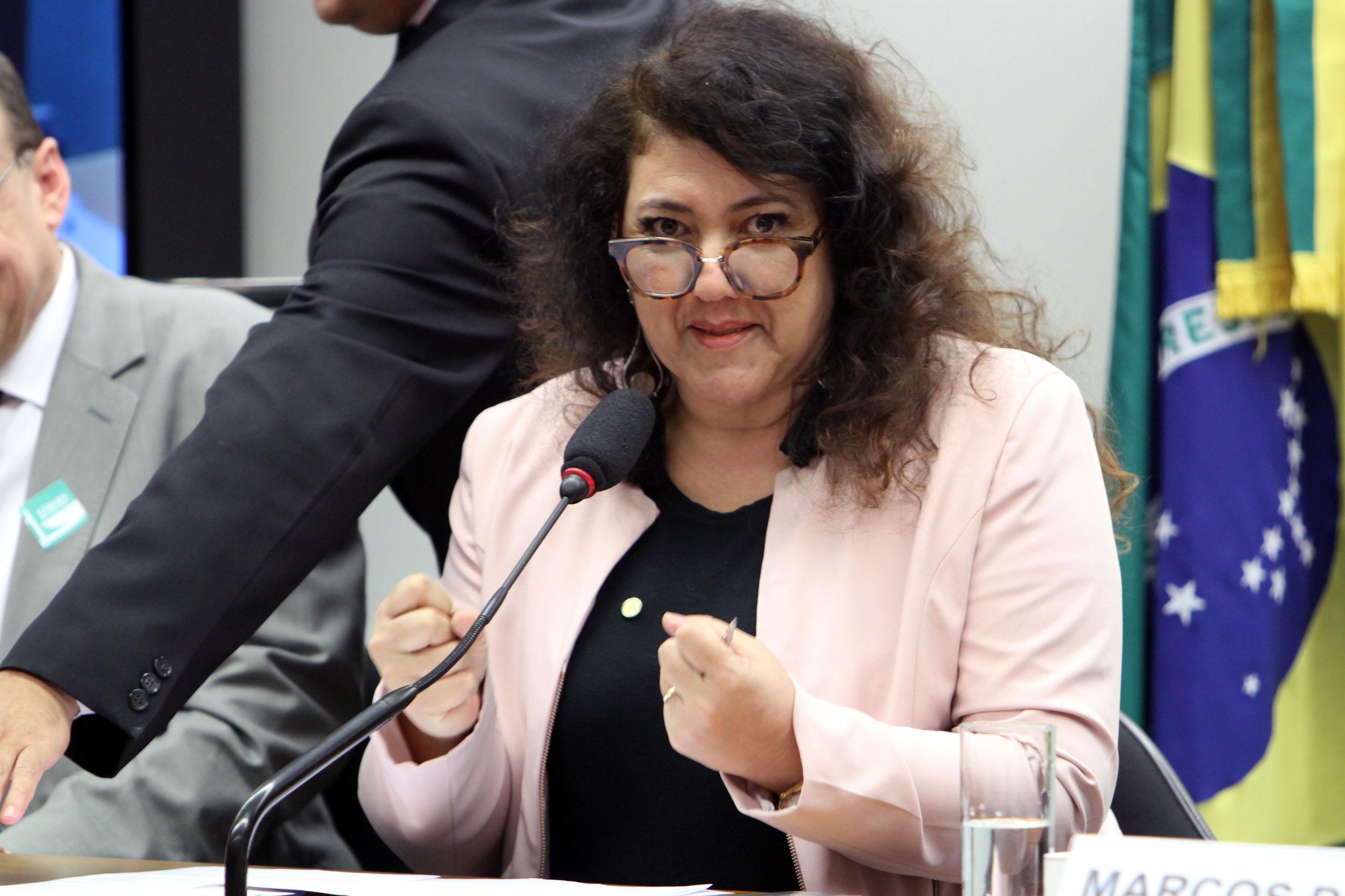 Audiência Pública e Reunião Ordinária. Dep. Christiane de Souza Yared (PR - PR)