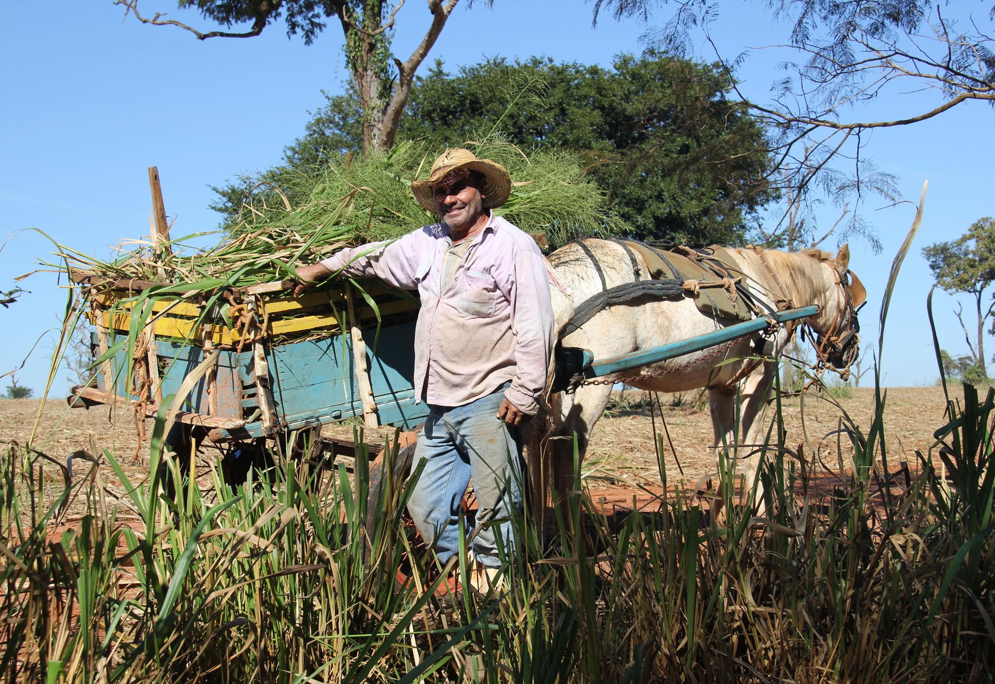Agropecuária - geral - produtores rurais fazendas rural campo trabalhador