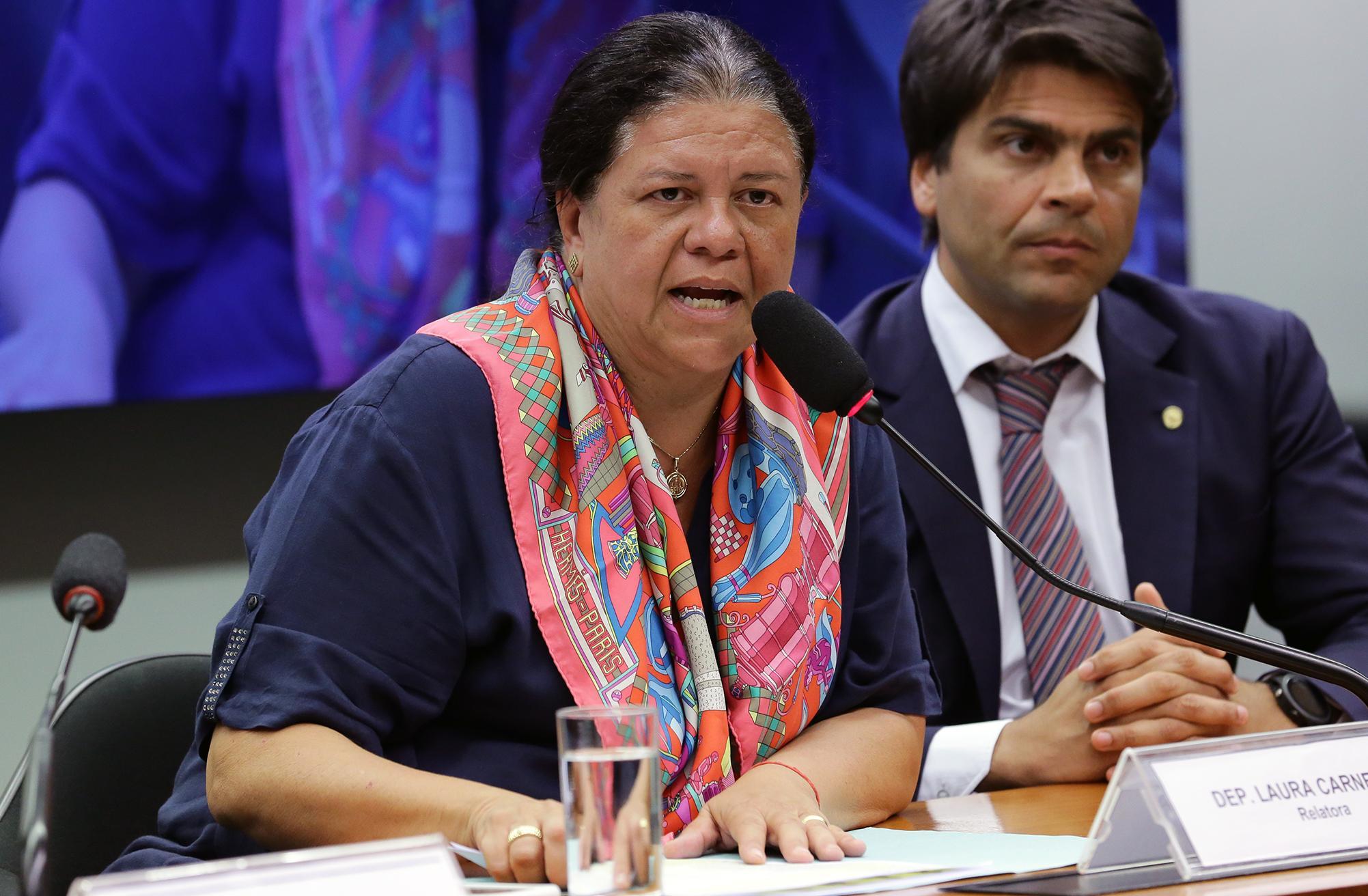 Audiência pública sobre o orçamento da segurança pública no Estado do Rio de Janeiro. Dep. Laura Carneiro (DEM - RJ)