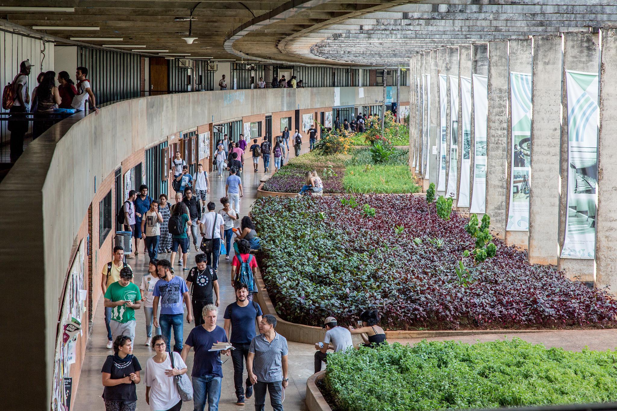 Educação - geral - universidades ensino superior estudantes universitários UnB