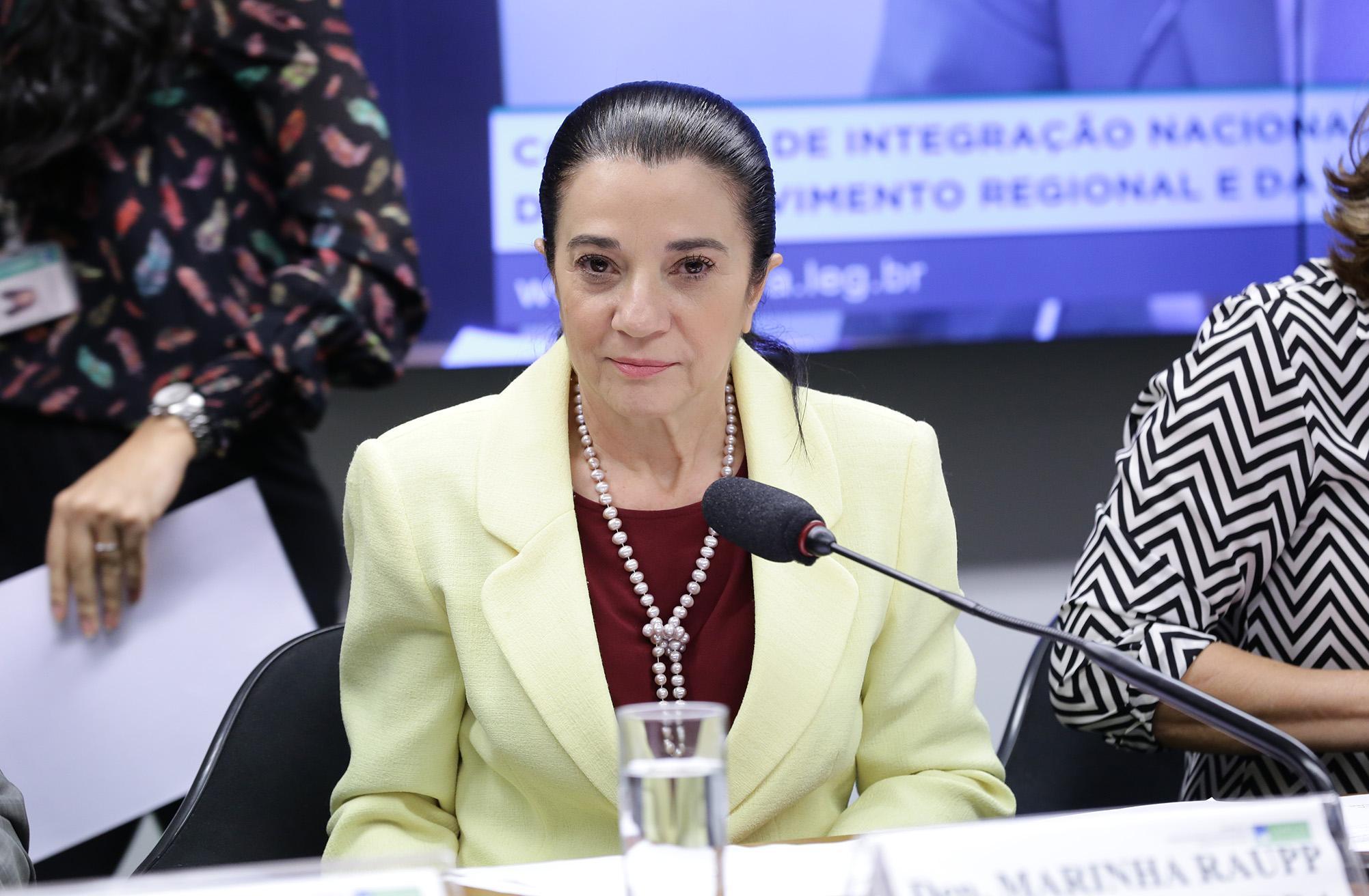 Reunião Ordinária e Audiência Pública . Dep. Marinha Raupp ( PMDB - RO)