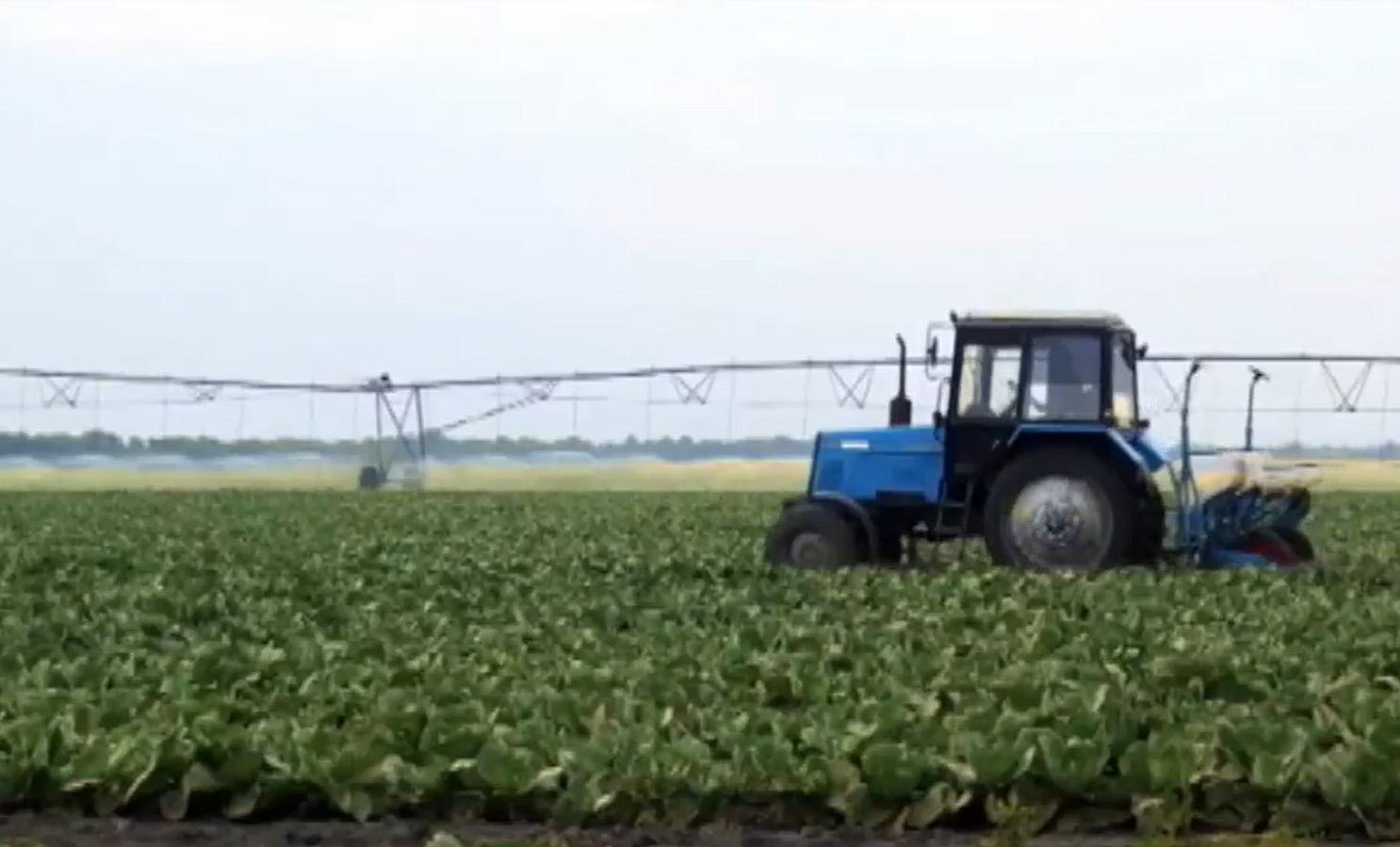 Agropecuária - plantações - trator irrigação