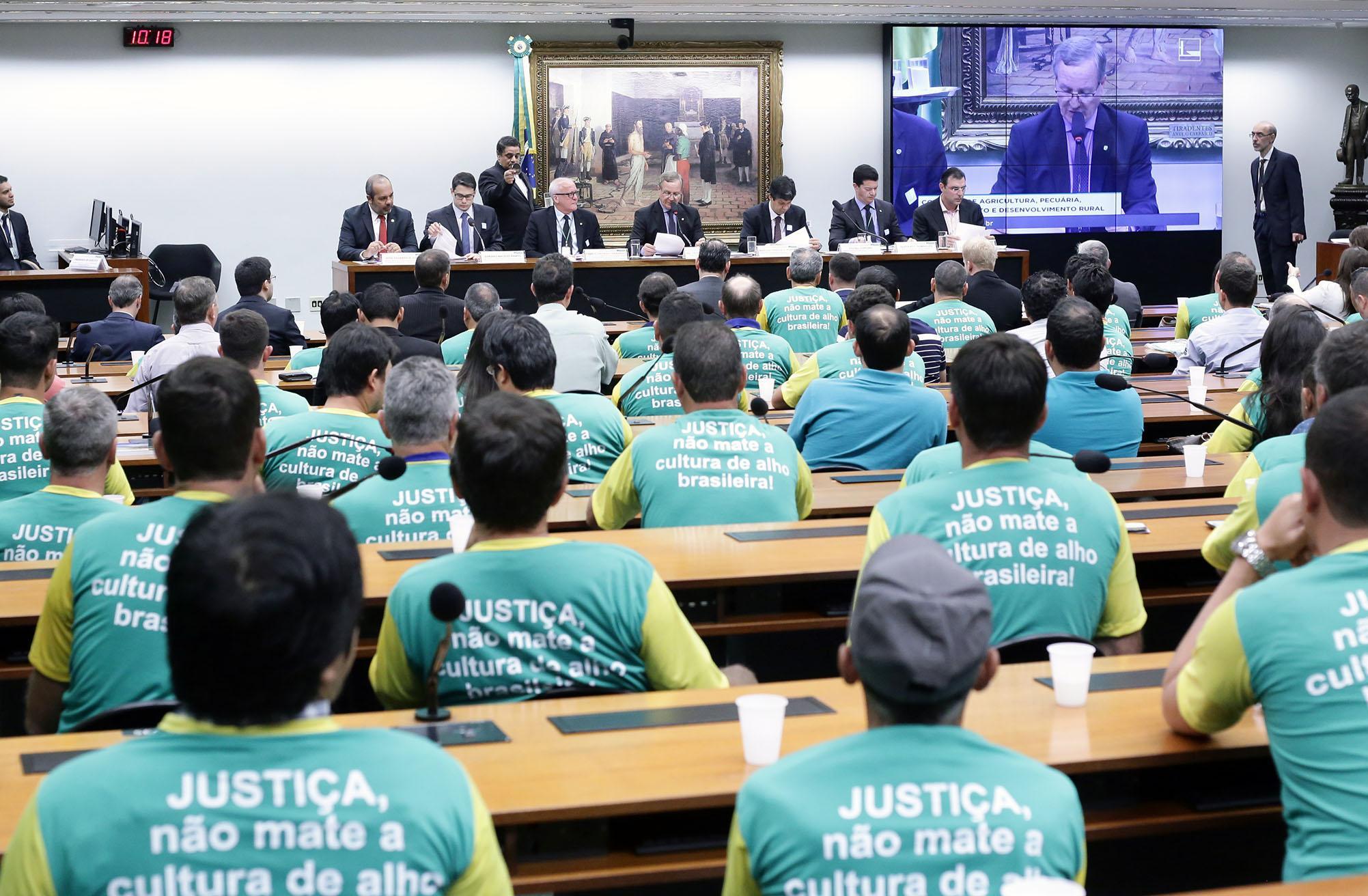 Audiência pública sobre os impactos da importação de cebola e alho na produção nacional, a fim de buscar soluções e discutir políticas públicas para o setor