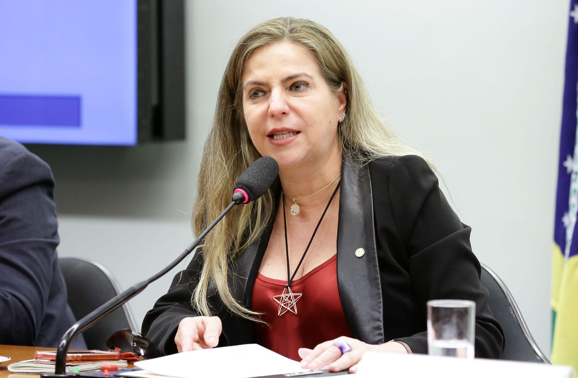 Audiência pública sobre os desafios, impasses e perspectivas na gestão cultural dos municípios brasileiros. Dep. Luizianne Lins (PT - CE)