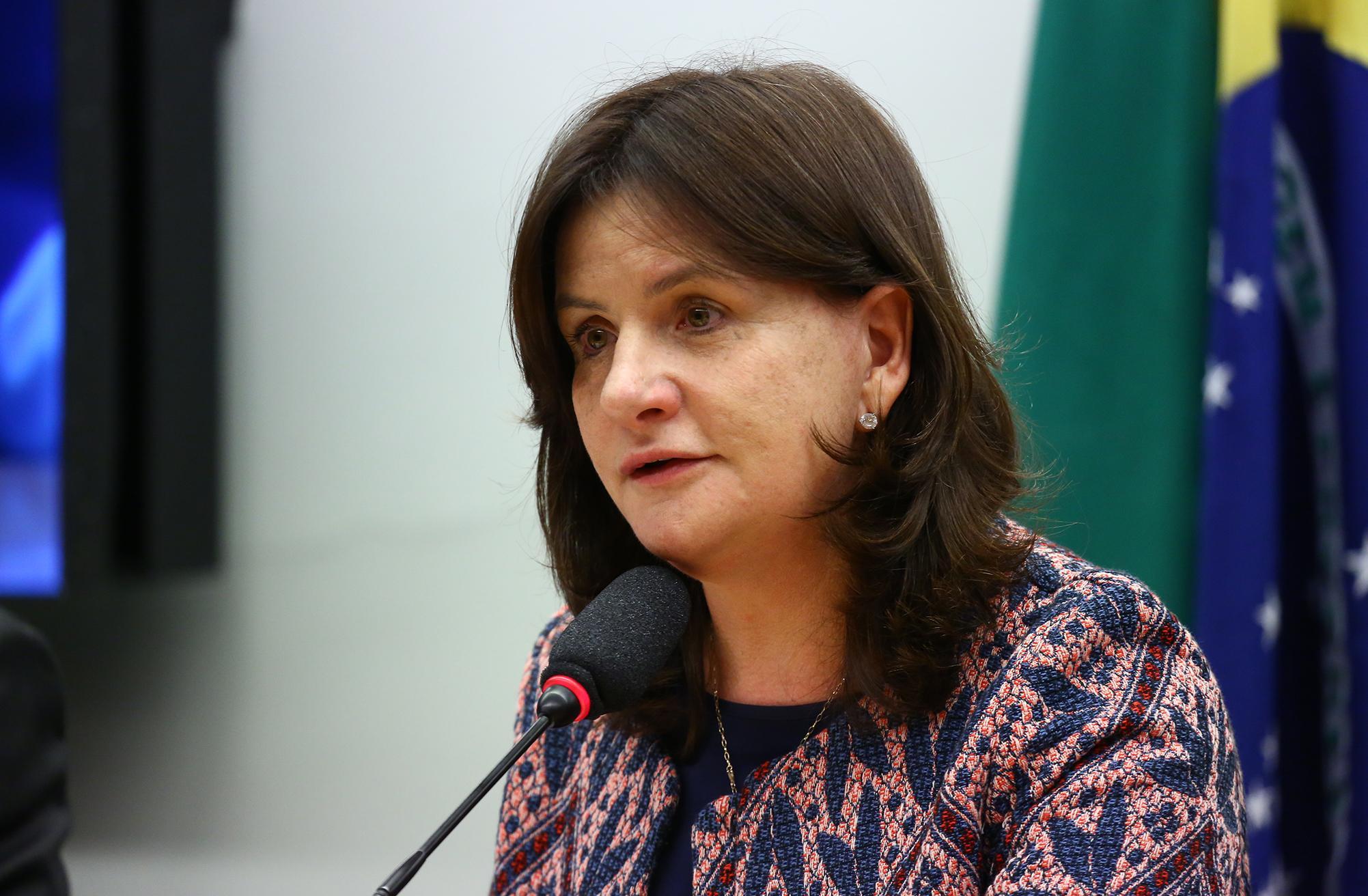 Audiência Pública para debater sobre o acesso aos insumos, medicamentos e ao tratamento para diabetes no SUS. Dep. Carmen Zanotto (PPS - SC)