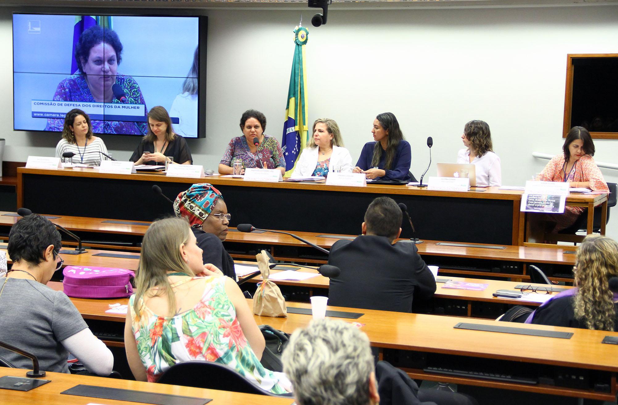 Audiência pública sobre a aplicabilidade da lei nº 13.642/18 - Lei Lola, que atribui à Polícia Federal a investigação de crimes praticados na internet que difundam conteúdo misógino