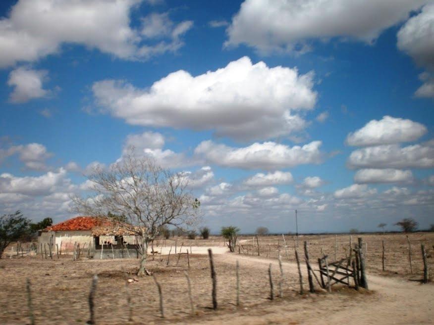 Salão Verde, 25/09/2018 - Sertão do Sergipe, desertificação, semiárido, deserto, seca