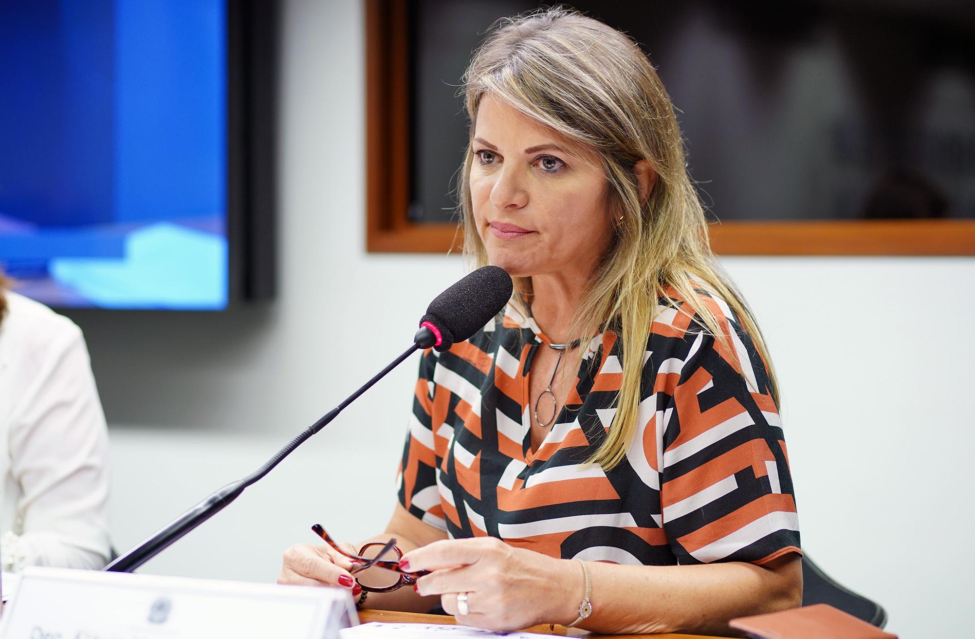 Subcomissão Especial Estatuto do Idoso. Dep. Flávia Morais (PDT - GO)