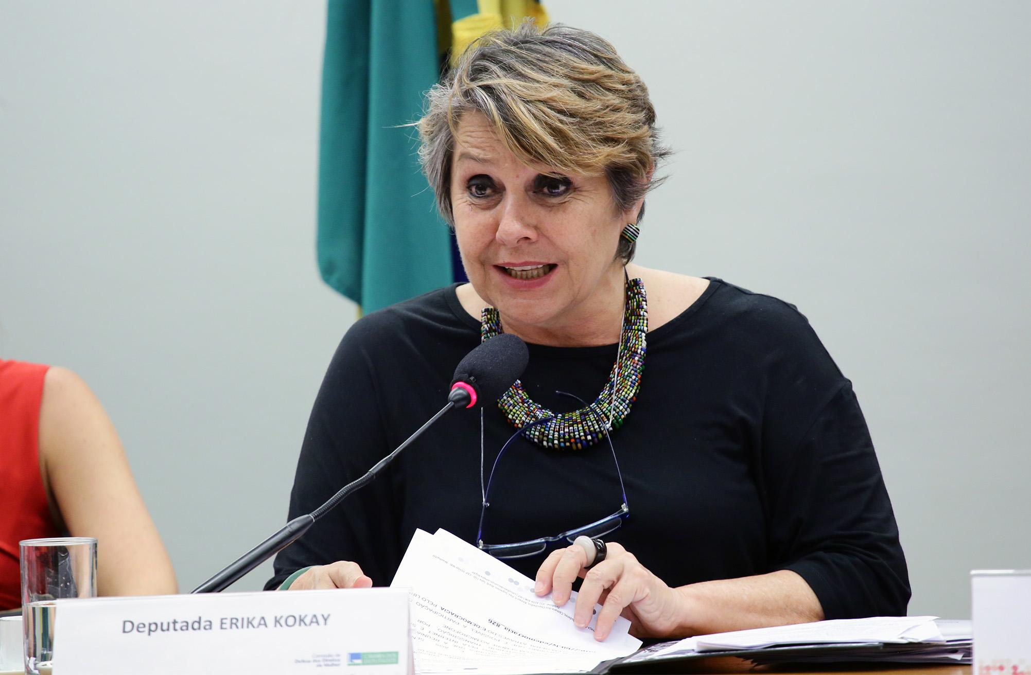 Audiência pública. Dep. Èrika Kokay (PT-DF)