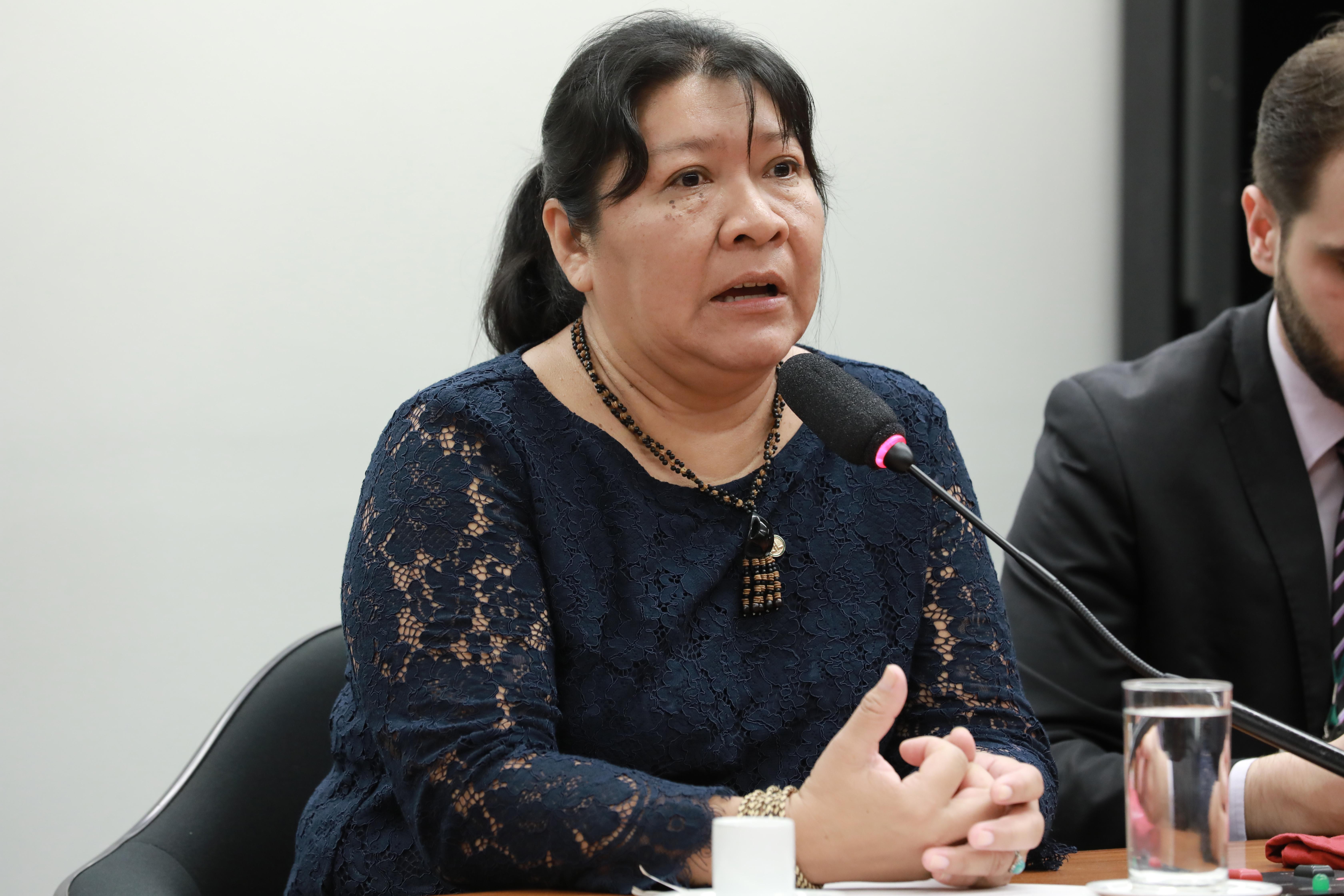 Encontro com lideranças indígenas. Deputada Joenia Wapichana (REDE/RR), primeira deputada indígena, recebe lideranças da TI Morro dos Cavalos (SC)