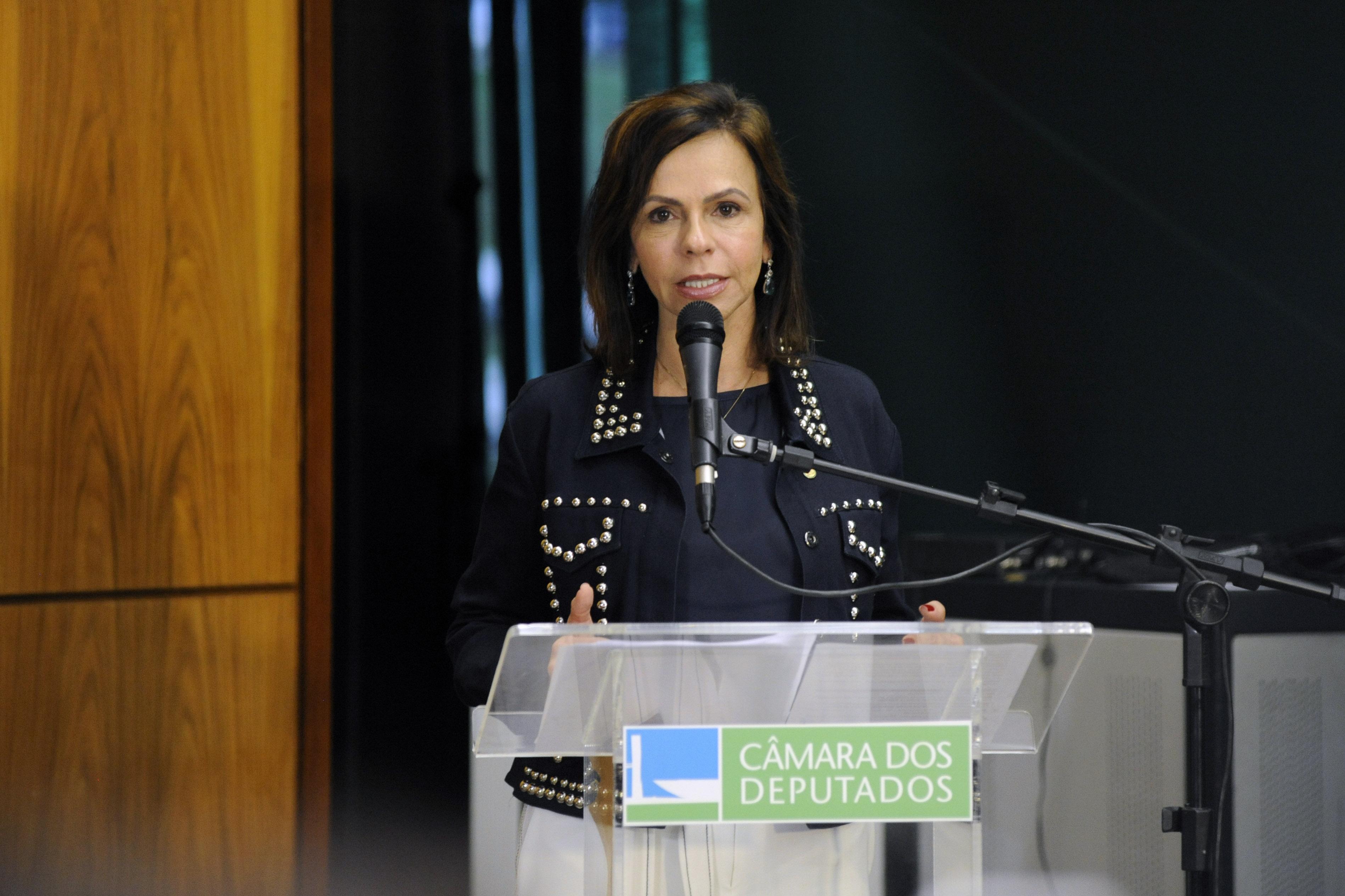 """Encontro """"O Trabalho da ONU Mulheres – diálogo e cooperação com parlamentares brasileiras"""". Dep. Professora Dorinha Seabra Rezende ( DEM - TO)."""