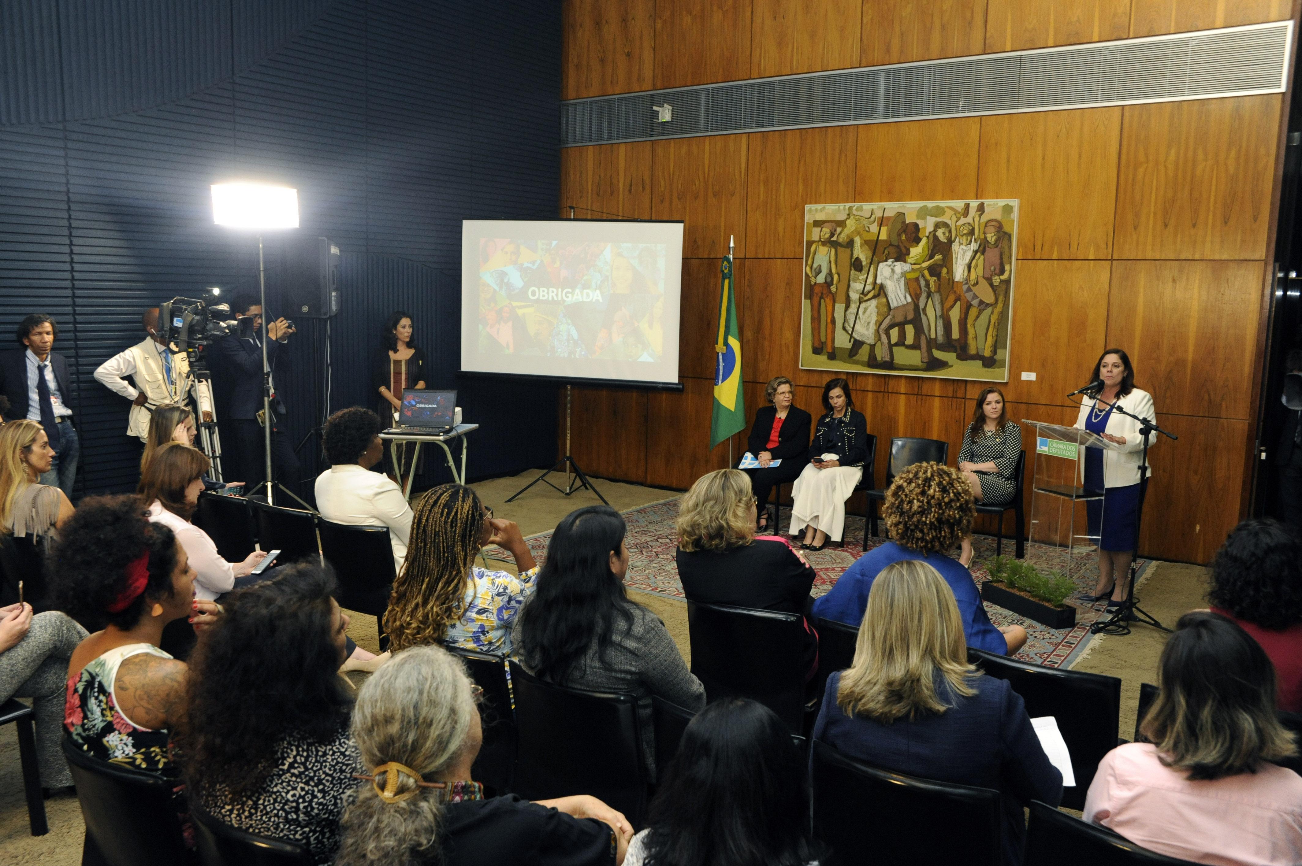 """Encontro """"O Trabalho da ONU Mulheres – diálogo e cooperação com parlamentares brasileiras""""."""