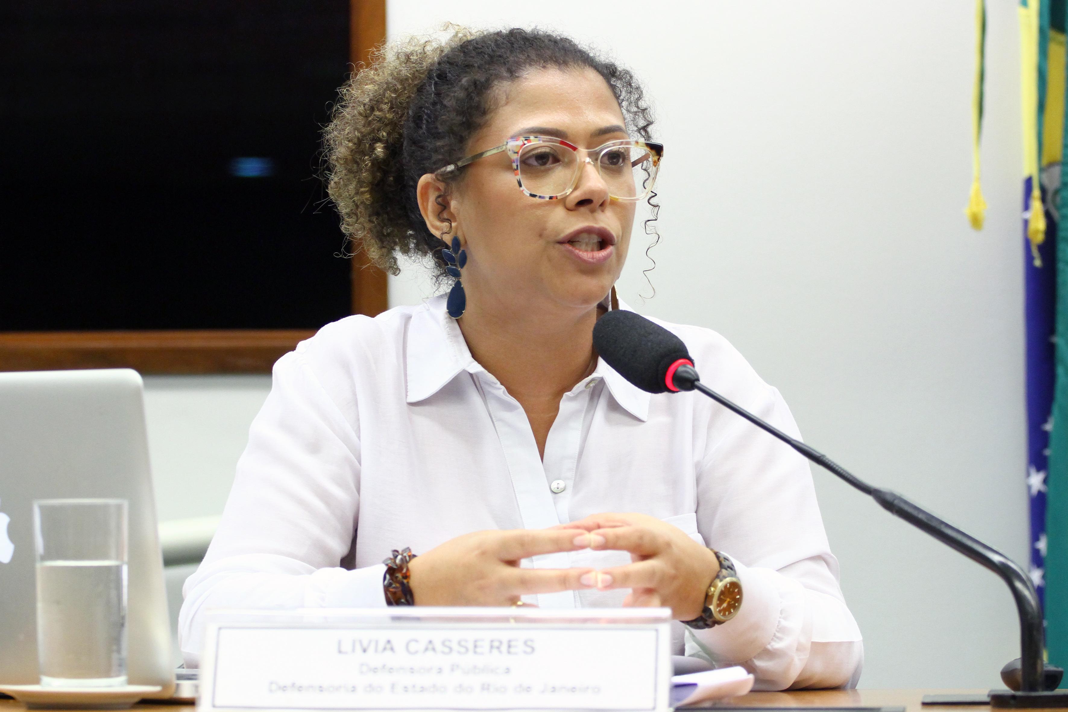 Audiência pública e reunião ordinária. Defensora Pública do Estado do Rio de Janeiro, LIVIA CASSERES