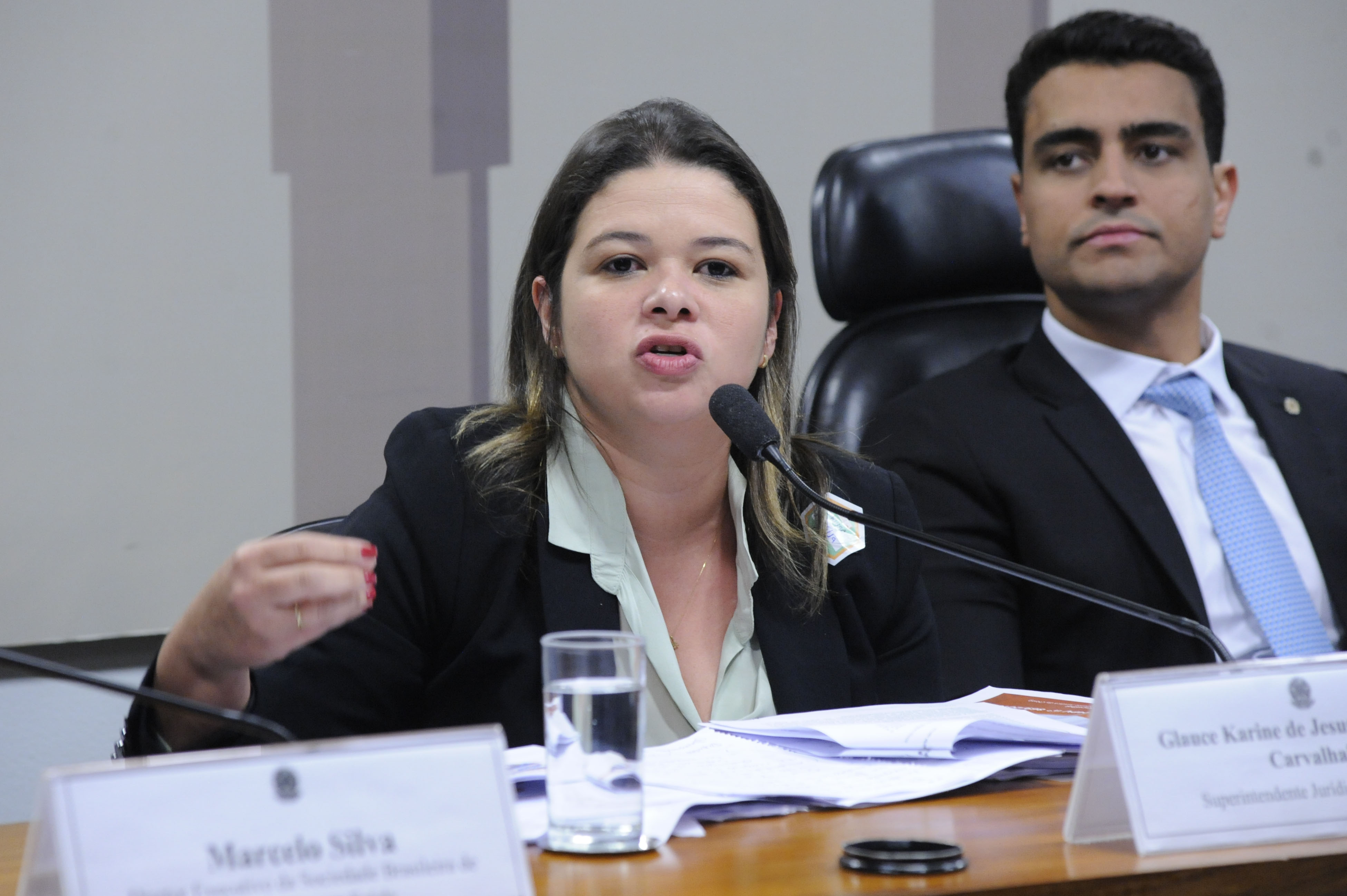 Comissão Mista sobre a MP 869/18, para dispor sobre a Proteção de Dados Pessoais e para criar a Autoridade Nacional de Proteção de Dados. Superintendente Jurídica da CNSEG, Glauce Karine