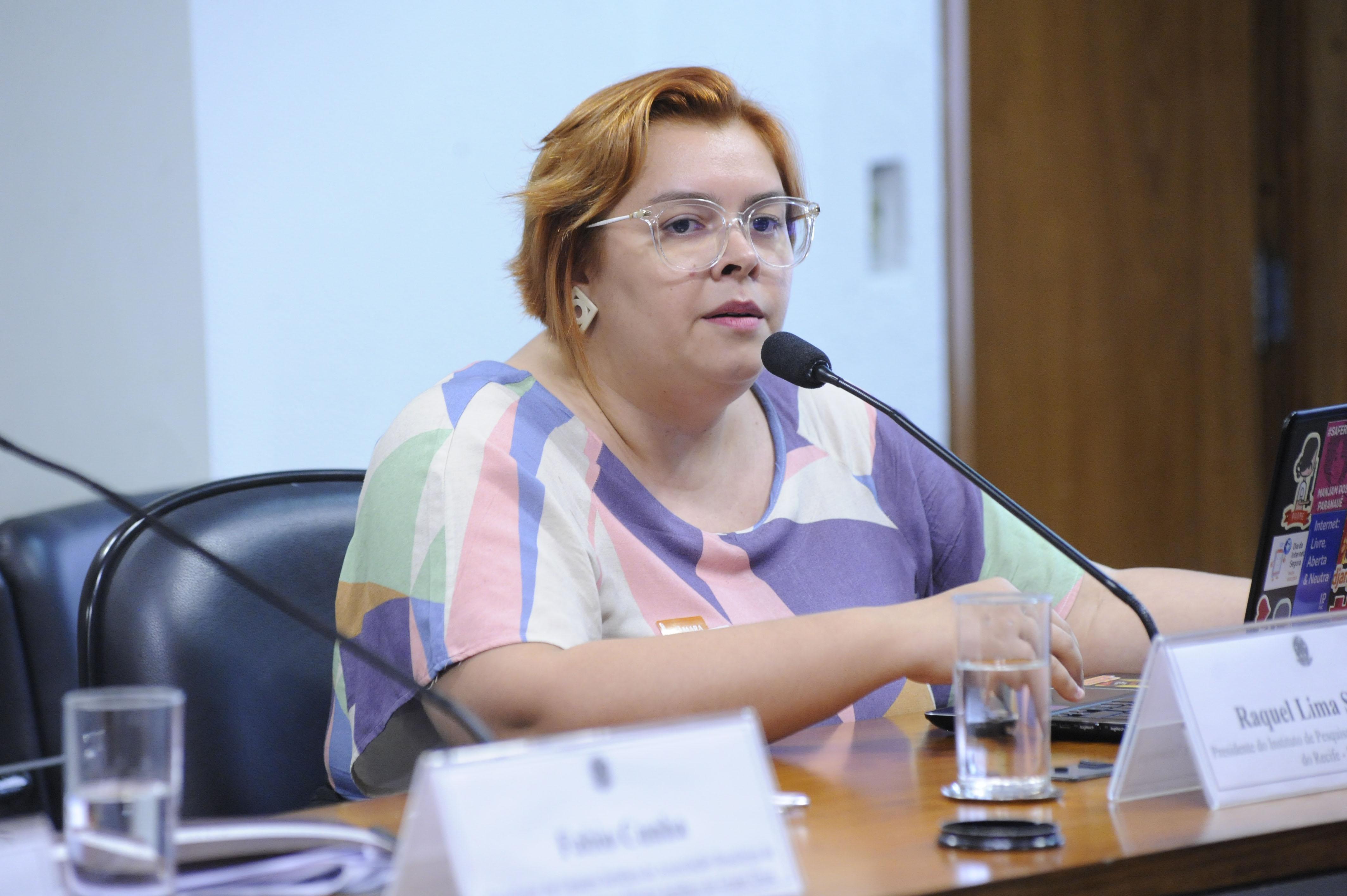 Comissão Mista sobre a MP 869/18, para dispor sobre a Proteção de Dados Pessoais e para criar a Autoridade Nacional de Proteção de Dados. Presidente do IP. Rec., Raquel Lima Saraiva