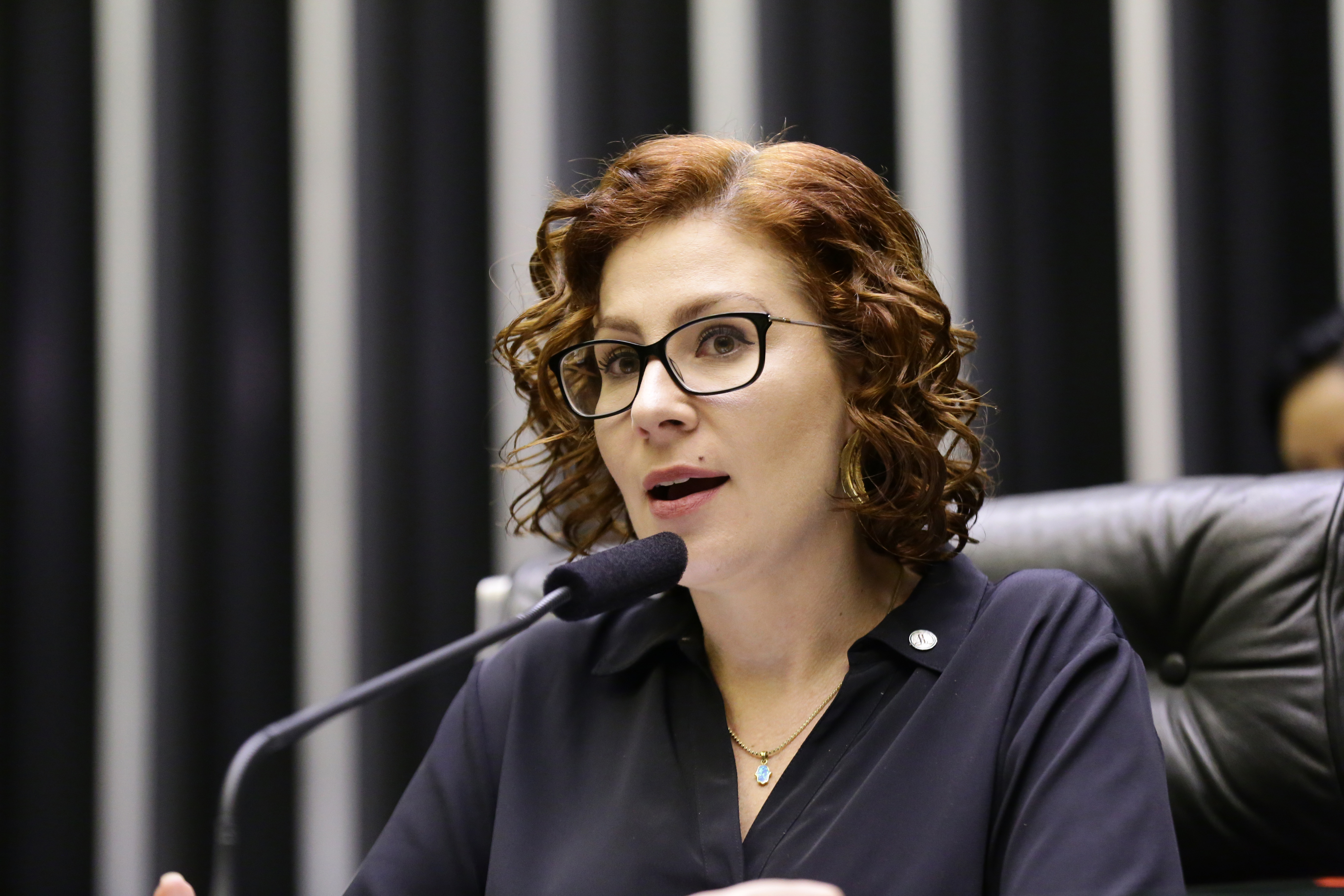 Homenagem ao Dia da Policia Civil. Dep. Carla Zambelli (PSL-SP)