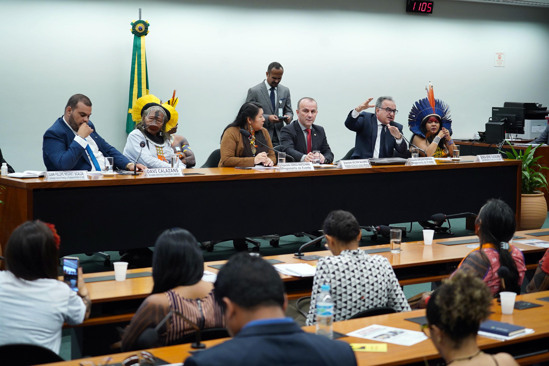 Audiência pública sobre o papel dos povos indígenas na proteção do meio ambiente e desenvolvimento sustentável