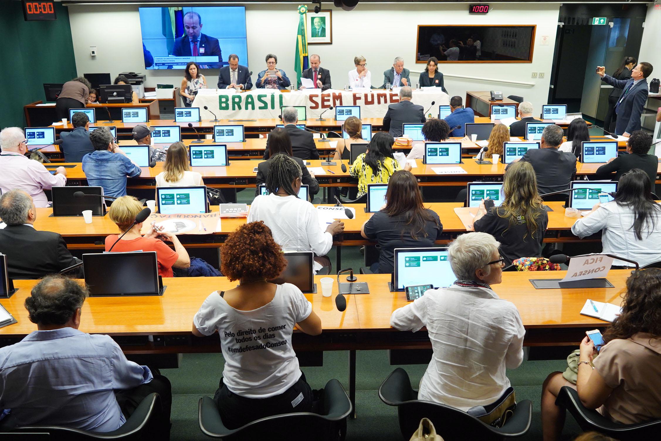 Audiência pública sobre os direitos humanos à alimentação
