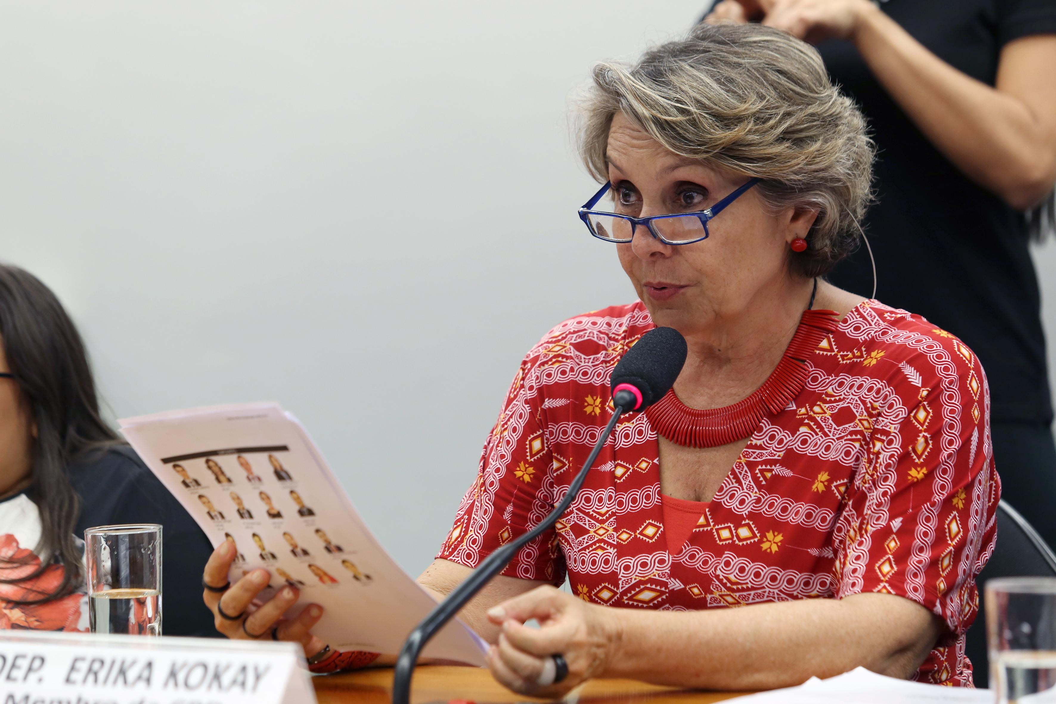 Audiência pública para divulgação da agenda Legislativa das Pessoas com Deficiência. Dep. Erika Kokay (PT-DF)