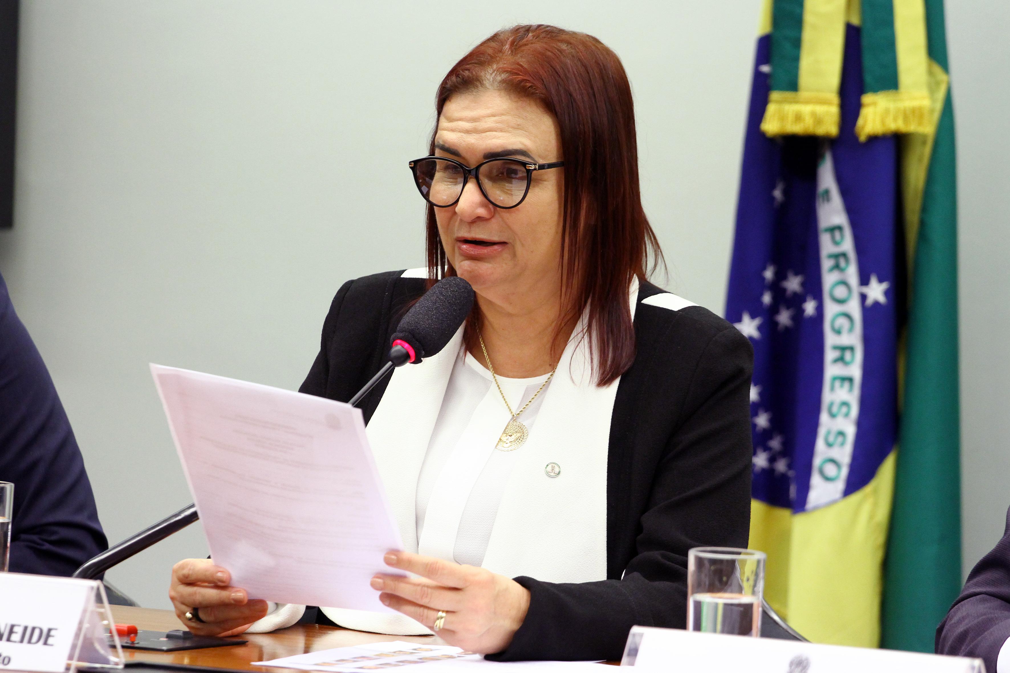 Audiência pública da Subcomissão Permanente de Financiamento da Educação Básica, Valorização do Magistério e Reforma da Previdência. Dep. Professora Rosa Neide (PT-MT)