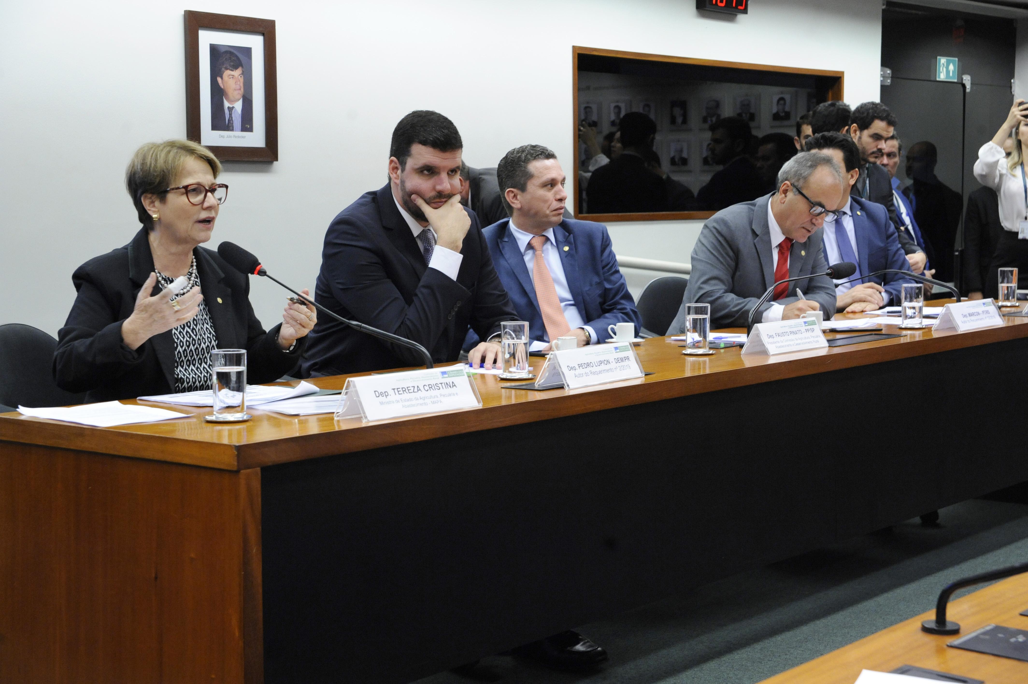 Audiência Pública sobre a Prioridades da pasta para o ano de 2019 e aspectos sobre a execução das políticas de responsabilidade do MAPA