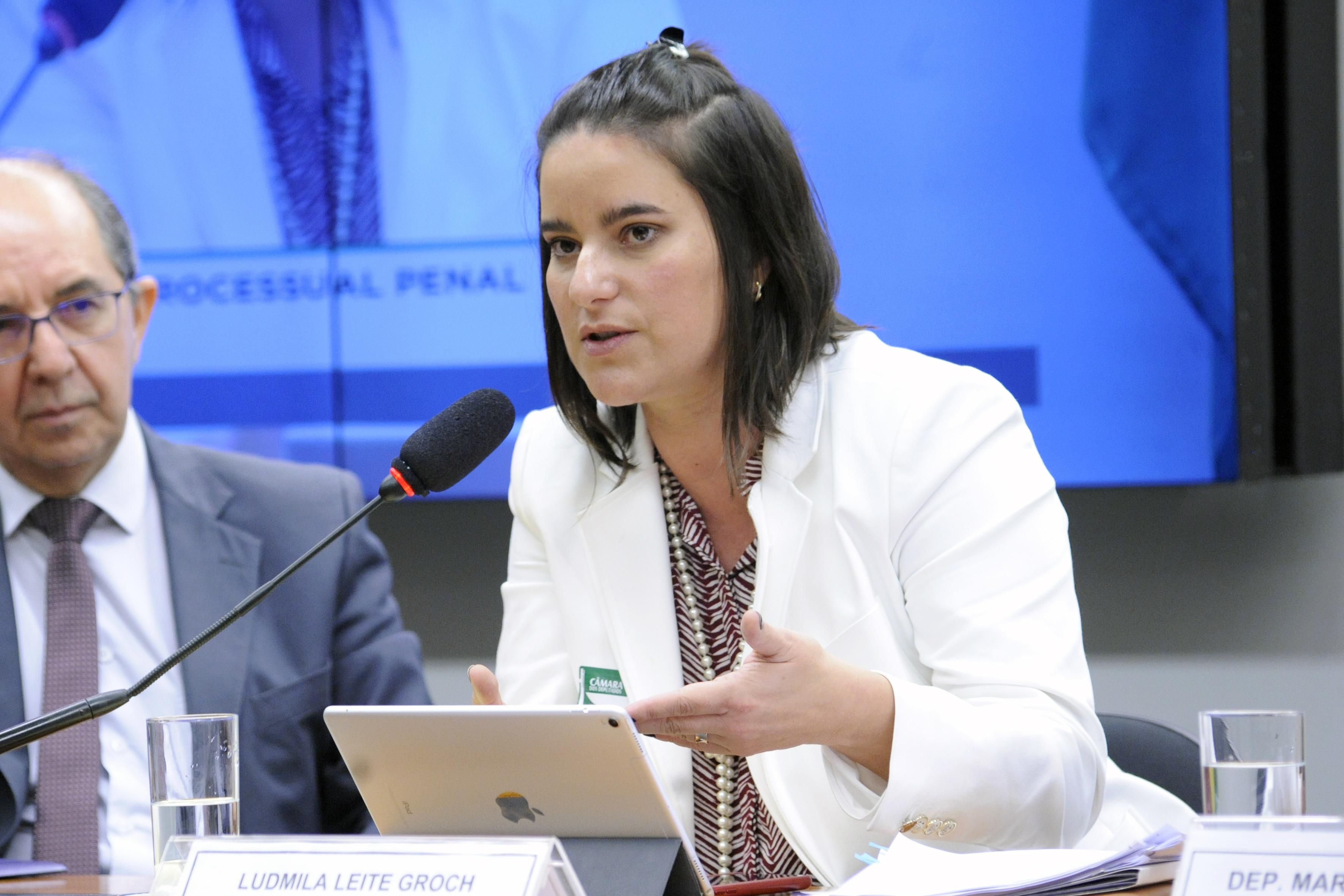 Audiência pública sobre as mudanças na legislação penal e processual penal. Senhorita Ludmila Leite Groch