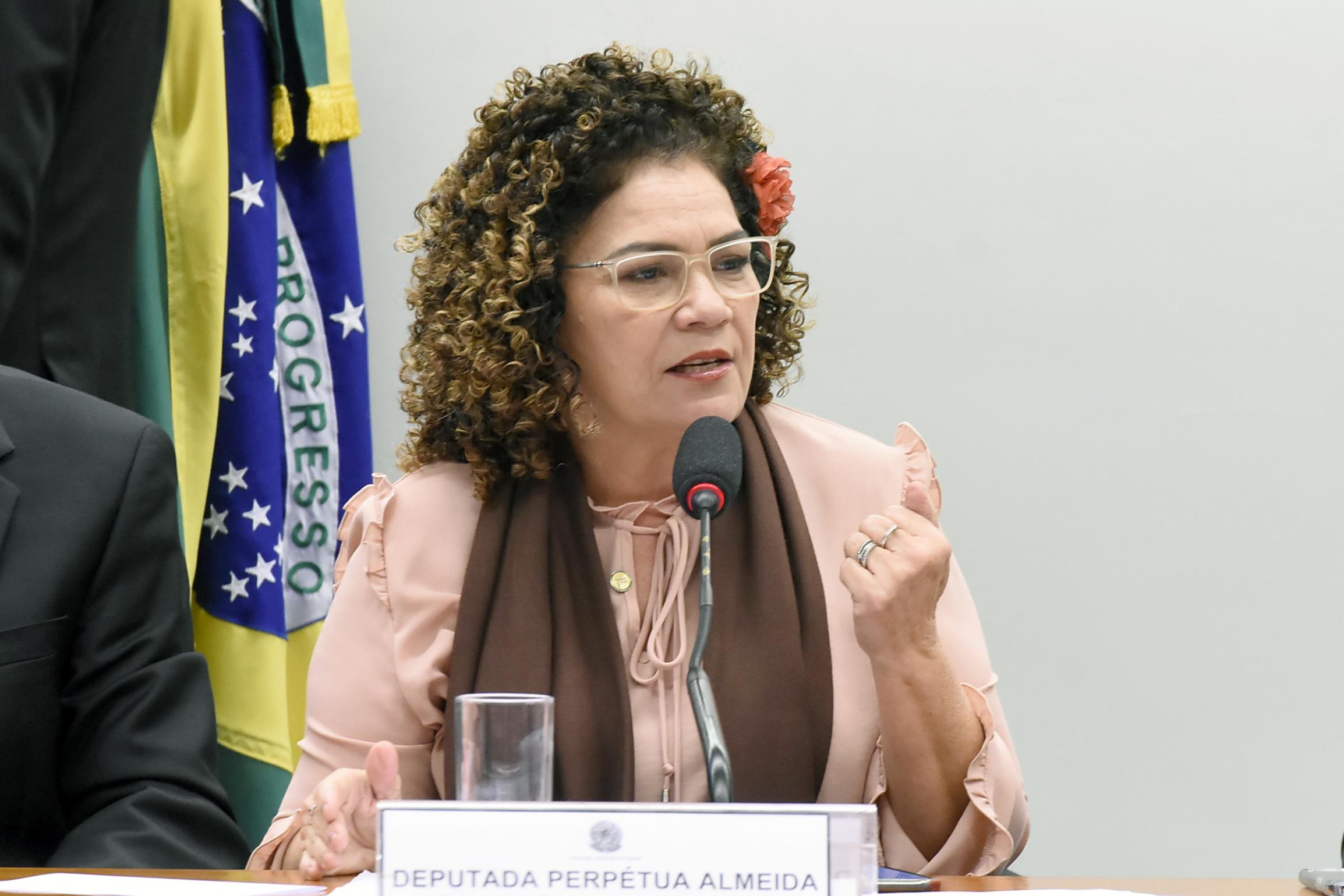 Audiência pública sobre as ações políticas, diplomáticas e legislativas. Dep. Pérpetua Almeida (PCdoB-AC)