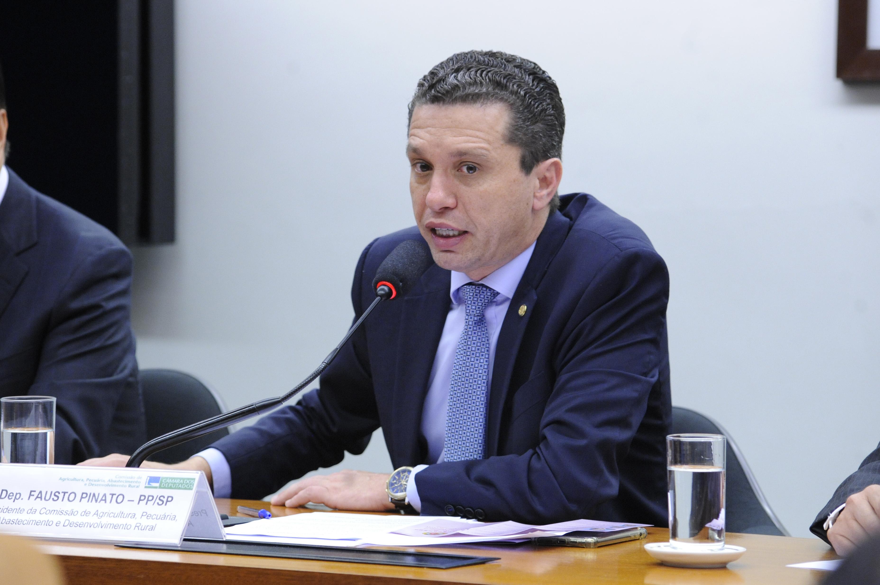 Visita Oficial da Delegação do Parlamento Chinês à Comissão de Agricultura. Dep. Fausto Pinato (PP-SP)