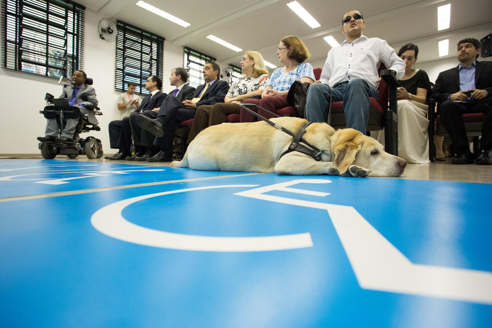 Direitos Humanos - deficiente - cegos cadeirantes deficiências cão-guia (Centro de Tecnologia e Inclusão no Parque Estadual das Fontes do Ipiranga, São Paulo-SP)