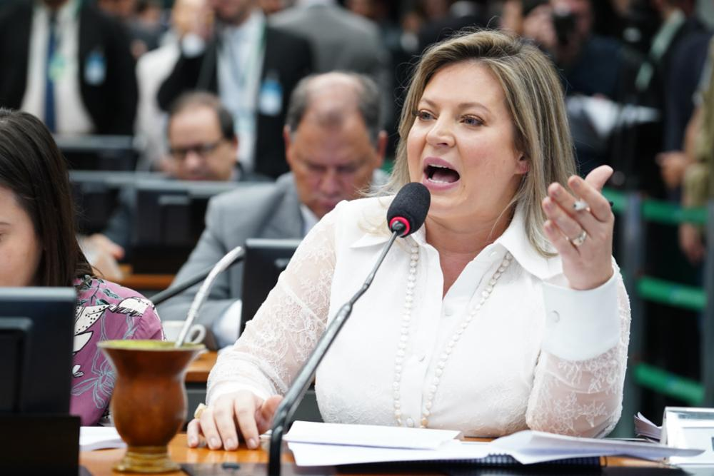 Leitura do relatório e parecer do relator da Comissão Especial da Reforma da Previdência, Samuel Moreira (PSDB-SP). Dep. Joice Hasselmann (PSL-SP)