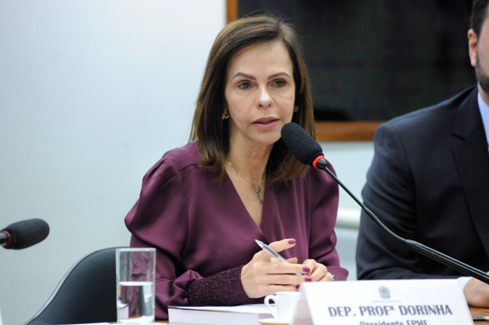 Seminário Nacional – 5 anos do Plano Nacional de Educação. Dep. Professora Dorinha Seabra Rezende (DEM-TO)