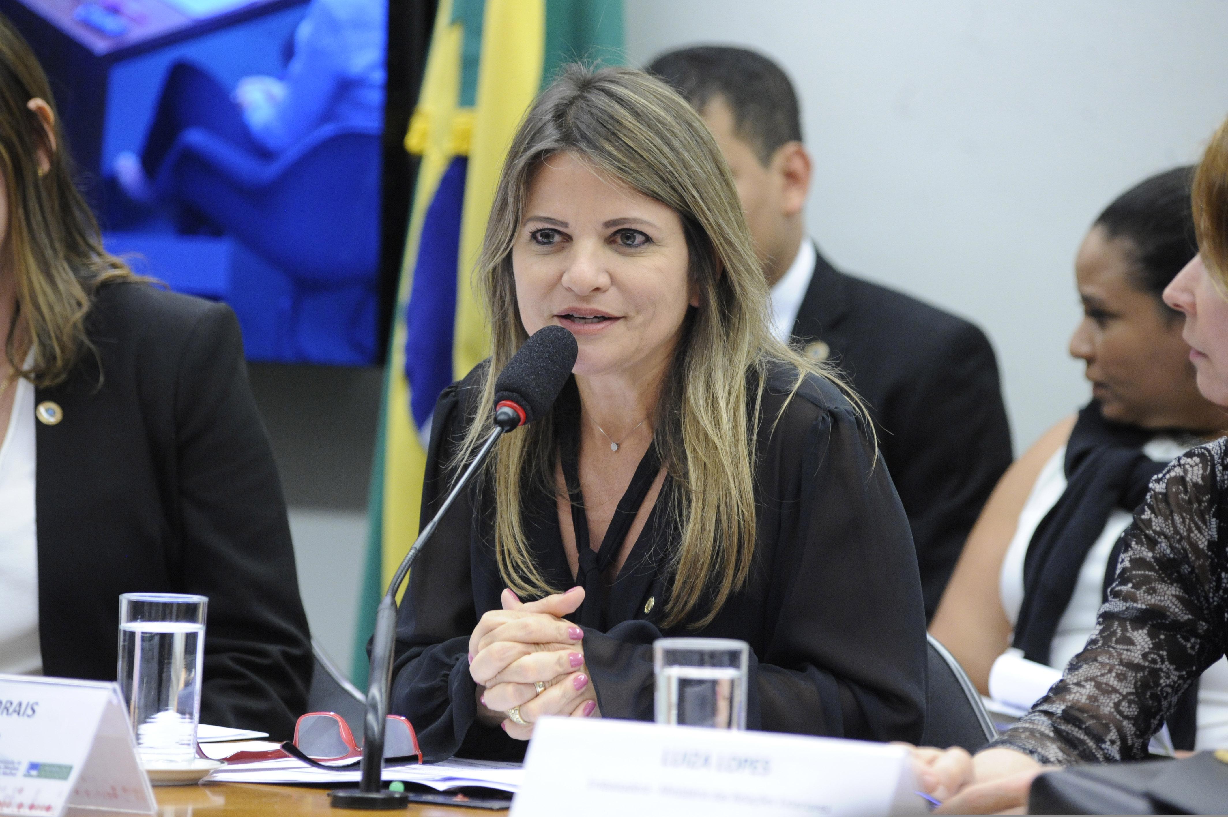 Audiência Pública sobre a situação de violência contra mulheres brasileiras no exterior. Dep. Flávia Morais (PDT - GO)