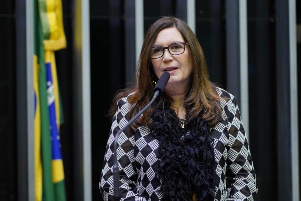 Homenagem ao Dia do Bombeiro Brasileiro. Dep. Bia Kicis (PSL-DF)
